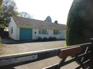 2 bed Detached Bungalow in The Paddock, Frogham...