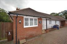 Detached Bungalow for sale in Eastwell Place, Hailsham