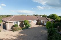 4 bed Detached Bungalow for sale in Martineau Lane, HASTINGS