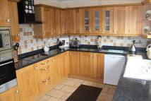 Detached Bungalow for sale in The Hollies...