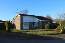 Detached Bungalow for sale in Elm Close, South Wootton...