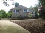 3 bedroom Detached Bungalow for sale in Hall Drive, Canwick...