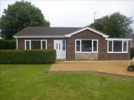Detached Bungalow in Delamore Way...