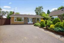 Detached Bungalow for sale in Perry Close...