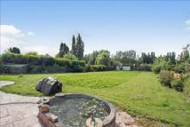 Detached Bungalow for sale in Iveshead Road, Shepshed...