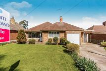 Detached Bungalow for sale in Lilly Hall Road, Maltby...