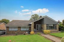 Detached Bungalow for sale in Brooks Close, Newhaven