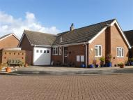 Detached Bungalow for sale in Spurway Park, Polegate