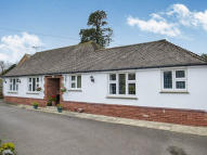 Detached Bungalow for sale in Old Drive, Polegate