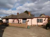 Detached Bungalow for sale in Manor Road, Mildenhall