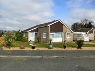 Detached Bungalow for sale in Larch Close, Lakenheath...