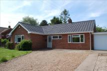 Detached Bungalow in White Horse Lane...