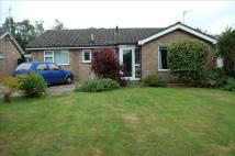 Detached Bungalow in Litester Close...