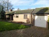 2 bed Detached Bungalow in Oakpark Close, Overstone...