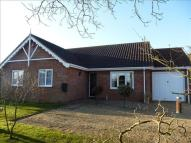 Detached Bungalow in Old Forge Close, Woodton...