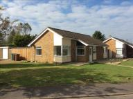 3 bedroom Detached Bungalow in Lakes Avenue, Mulbarton...