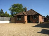 4 bedroom Detached Bungalow for sale in Buxton Road, Spixworth...