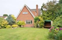 4 bed Detached home in Lime Tree Avenue, Norwich