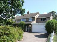 Detached home in Howe Lane, Poringland...