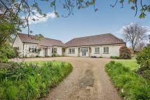 Detached Bungalow for sale in Strumpshaw Road...