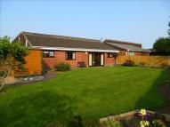 Detached Bungalow for sale in Fernie Close, Oadby...