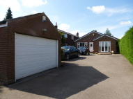 Detached Bungalow for sale in Houndhill Lane...