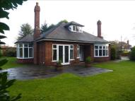 3 bed Detached Bungalow in Rutland Avenue...