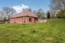 Detached Bungalow for sale in Waggon Lane, Upton...