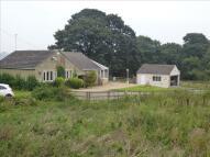 New Lane Detached Bungalow for sale