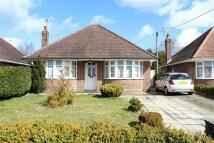 3 bedroom Detached Bungalow in Testwood Lane, Totton...