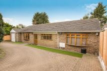 3 bed Detached Bungalow for sale in Grove Road, Thrapston...