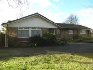 Detached Bungalow for sale in Holling Hill Lane...