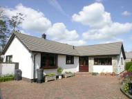 Detached Bungalow for sale in Doatshayne Lane, Musbury...
