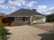 Detached Bungalow for sale in Hale Lane, Honiton