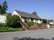 Millbrook Dale Detached Bungalow for sale