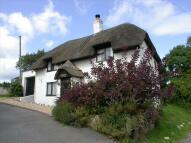 Smallridge Detached house for sale