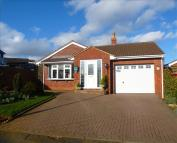 Detached Bungalow in Broadlands, Desborough...