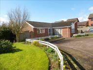 Detached Bungalow in Lower Steeping...