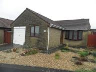Semi-Detached Bungalow for sale in The Laurels, Crewkerne