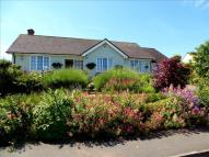Detached Bungalow for sale in South Park, Minehead