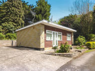 Detached Bungalow in Cleeve Park...
