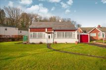 Detached Bungalow in Exeter Road, Tiverton