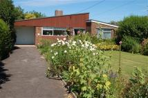 Detached Bungalow in Oakenground...