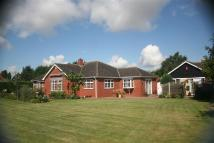 Westcliffe Road Detached Bungalow for sale
