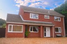 Detached property in Watton Road, Swaffham