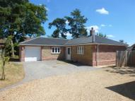 Detached Bungalow for sale in Holm Oak Gardens...