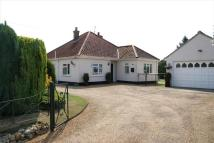 3 bedroom Detached Bungalow in Haspalls Road, SWAFFHAM