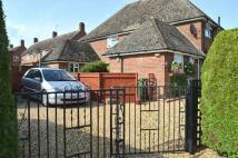 3 bedroom semi detached property for sale in The Oaklands, Swaffham