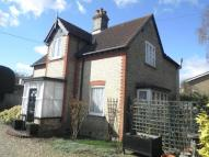 3 bed Detached house for sale in Norwich Road, THETFORD
