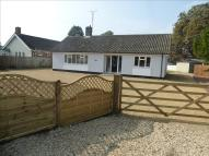 Detached Bungalow for sale in Bury Road, Thetford